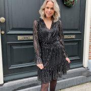 Aimee silver dress